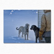 HOUNDS_IN_WINTER